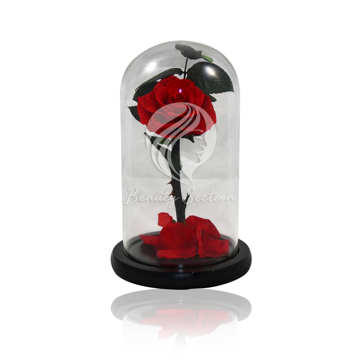 Rose im Glas, langlebige Rose, Infinity Rose, bis 5 Jahre haltbar